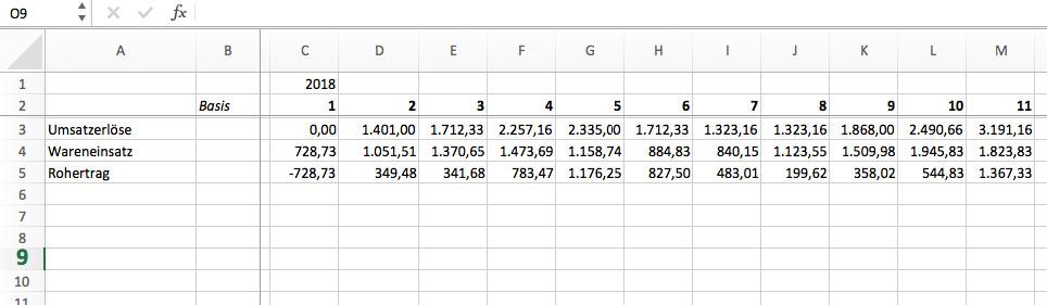 Finanzplan mit Excel, Plan GuV Schritt 1